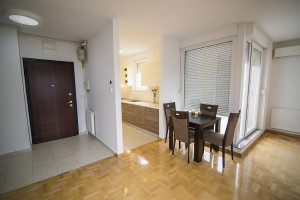 Penthouse apartment Zagreb